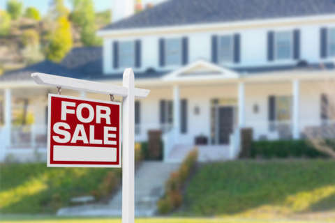 What's fueling the surge in local house prices?