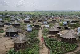 In this photo taken Friday, June 9, 2017, women and children return home with plastic containers of water, in a section of the sprawling complex of mud-brick houses and tents that makes up the Bidi Bidi refugee settlement in northern Uganda. One of the consequences of South Sudan's civil war has been the thousands of unaccompanied or separated children fleeing without parents or guardians, of which it is estimated around 9,000 have crossed into Uganda since July. (AP Photo/Ben Curtis)