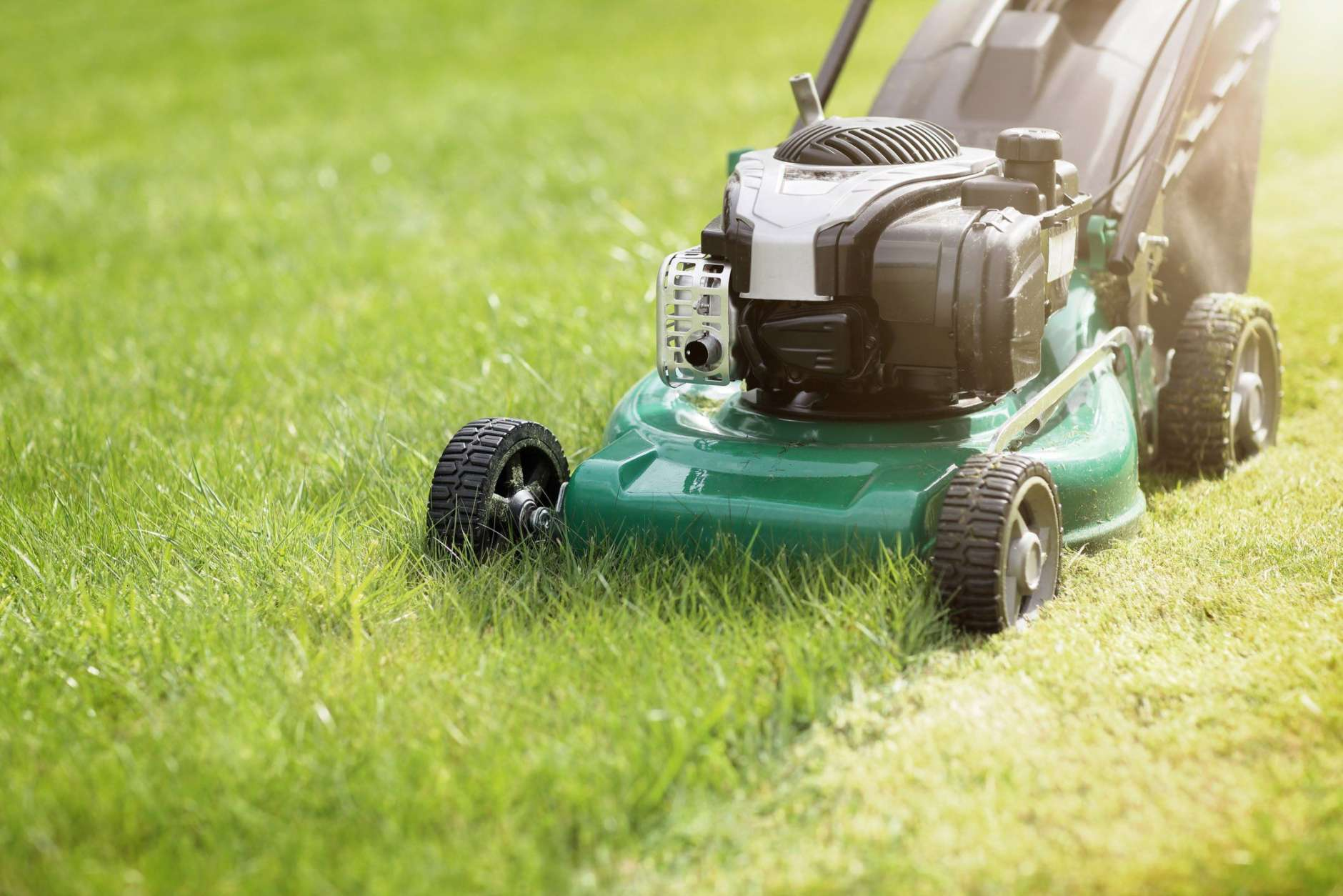 By using a sod lawn, you can turn a struggling lawn into a lush, green carpet. (Thinkstock)