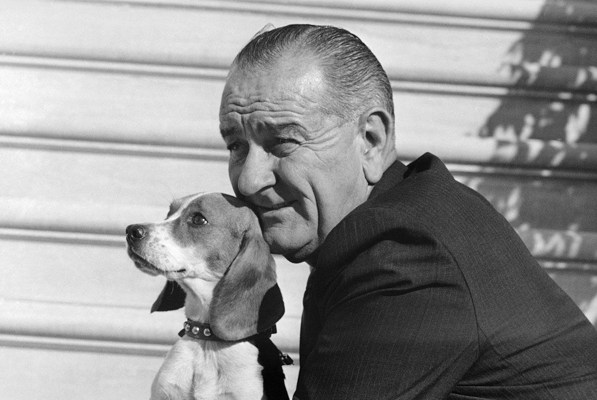 President Lyndon Johnson poses with Freckles, mother of five Beagle pups at the White House in Washington, Nov. 4, 1966. The president, just before leaving the Executive Mansion for his Texas ranch, showed off the pups, Freckles and Edgar, a gift from FBI director J. Edgar Hoover. The father of the pups is reported to be Jones Brookline Buddy, owned by Jean Austin DuPont of Wilmington, Delaware. (AP Photo/John Rous)