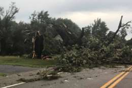 Damage after Monday's storm near the Chesapeake Bay area. (Courtesy Darron Zimmer)
