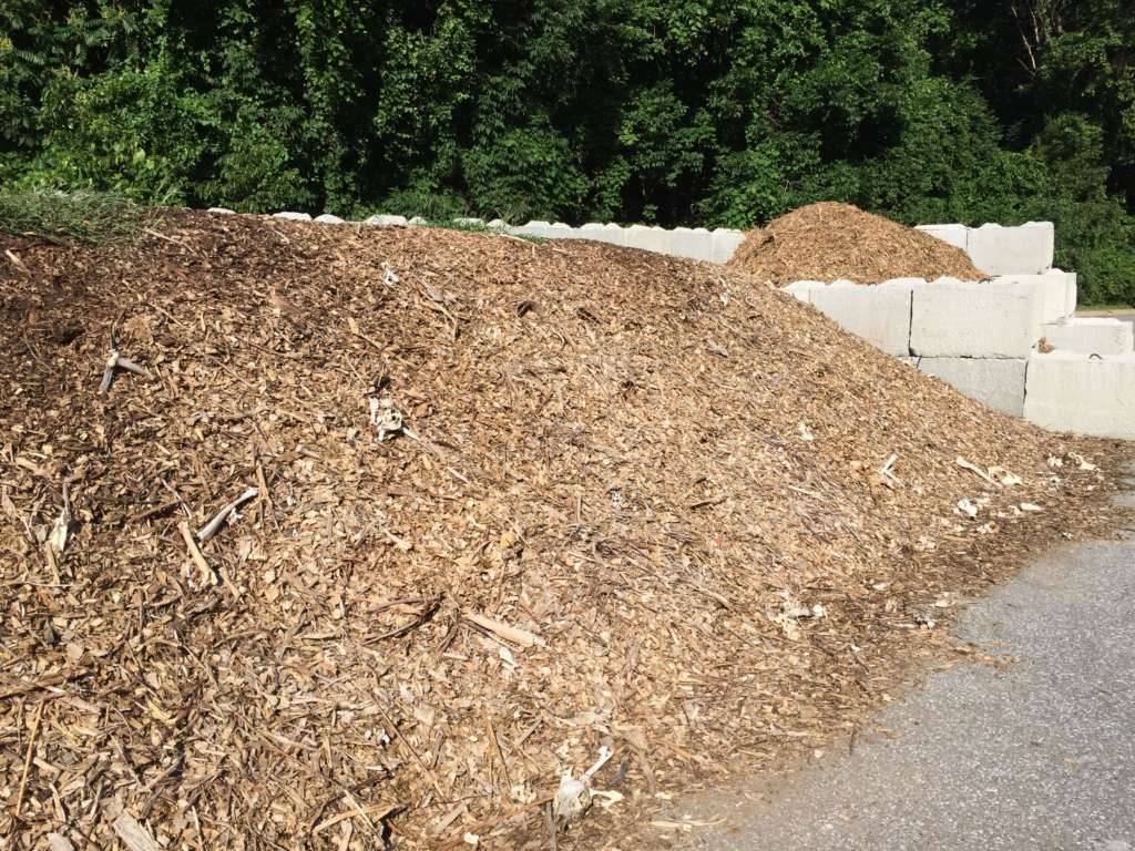 Dirty Wood Chips ~ Roadkill on maryland highways is put to work … as compost