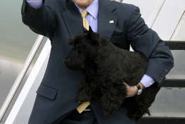 In this Feb. 29, 2008 file photo, President George W. Bush and his dog Barney step from Air Force One after arriving in Waco, Texas.  (AP Photo/Duane A. Laverty, File)