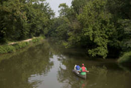 Canoeists paddle into the C & O Canal after launching from the Boathouse at Fletcher's Cove in Washington, Thursday, July 30, 2015. The Boathouse at Fletcher's Cove has rowboats, kayaks, canoes and bicycles for rent. They also sell fishing licenses, bait, tackle and refreshments. You could easily spend a whole visit to Washington exploring the museums, galleries and monuments along the National Mall.   (AP Photo/Carolyn Kaster)