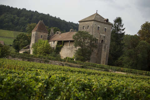 Wine of the Week: French wine for Bastille Day