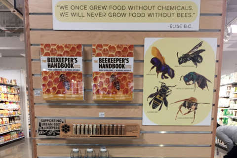 MOM's Organic Market reopens Alexandria store with a buzz; adds beekeeping gear to shelves