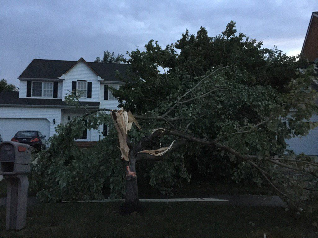 A possible tornado causes extensive damage in Queen Anne's County, Maryland. (WTOP/Kristi King)