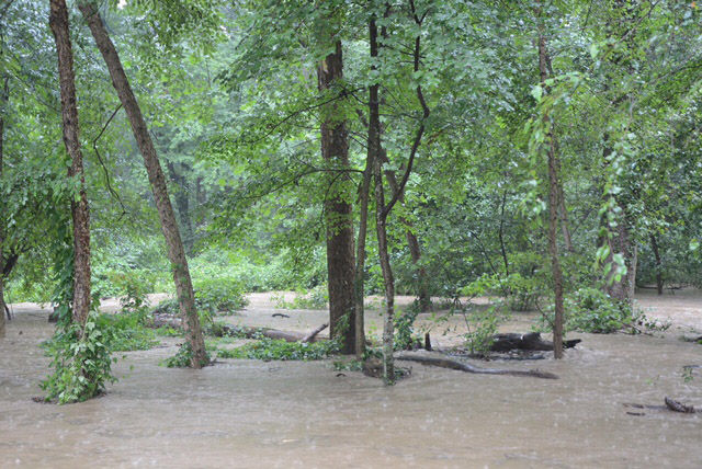Sligo Creek Parkway is closed south of Forest Glen Road in Silver Spring, Maryland due to flooding. (WTOP/Dave Dildine)