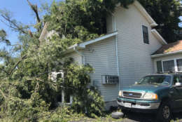 Fallen tree limbs cover a home in Stevensville, Maryland on Monday, July 24, 2017 after a violent storm tore through Queen Anne's County overnight. (WTOP/Steve Dresner)