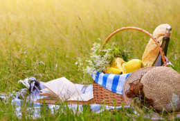 Picnic basket with fruits wine and bread on the grass with book and hat