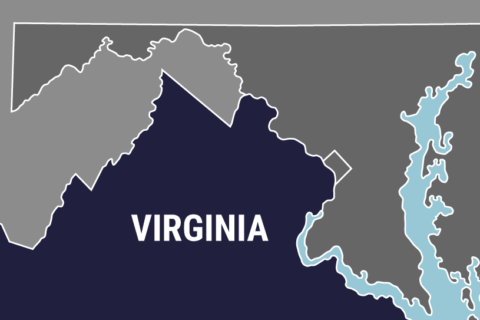 Virginia 2017 general election local race results