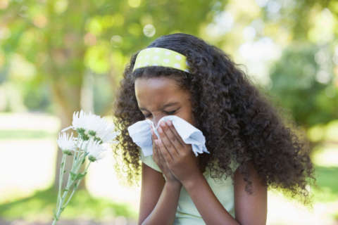 Childhood allergies may be influenced by prenatal exposure to sugar