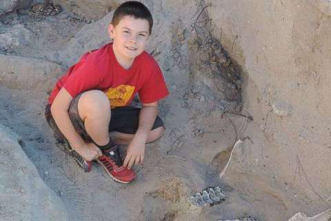 Boy finds 1.2 million-year-old fossil while playing outside