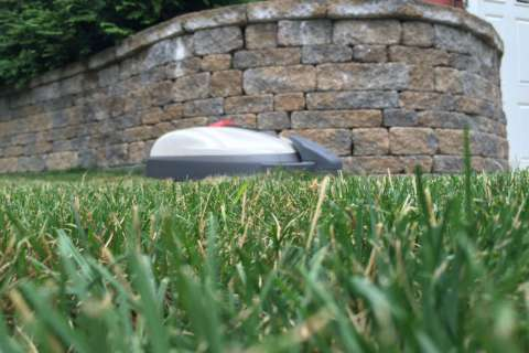 Robot lawn mowers: Coming to a yard near you