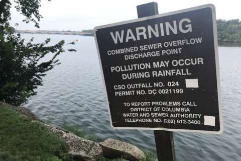 Raw sewage in DC rivers likely after heavy rain. But that will change