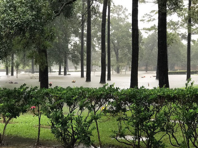 Flooding in the Nottingham Forest section of Houston, including a cemetery and surrounding areas. (WTOP/Steve Dresner)