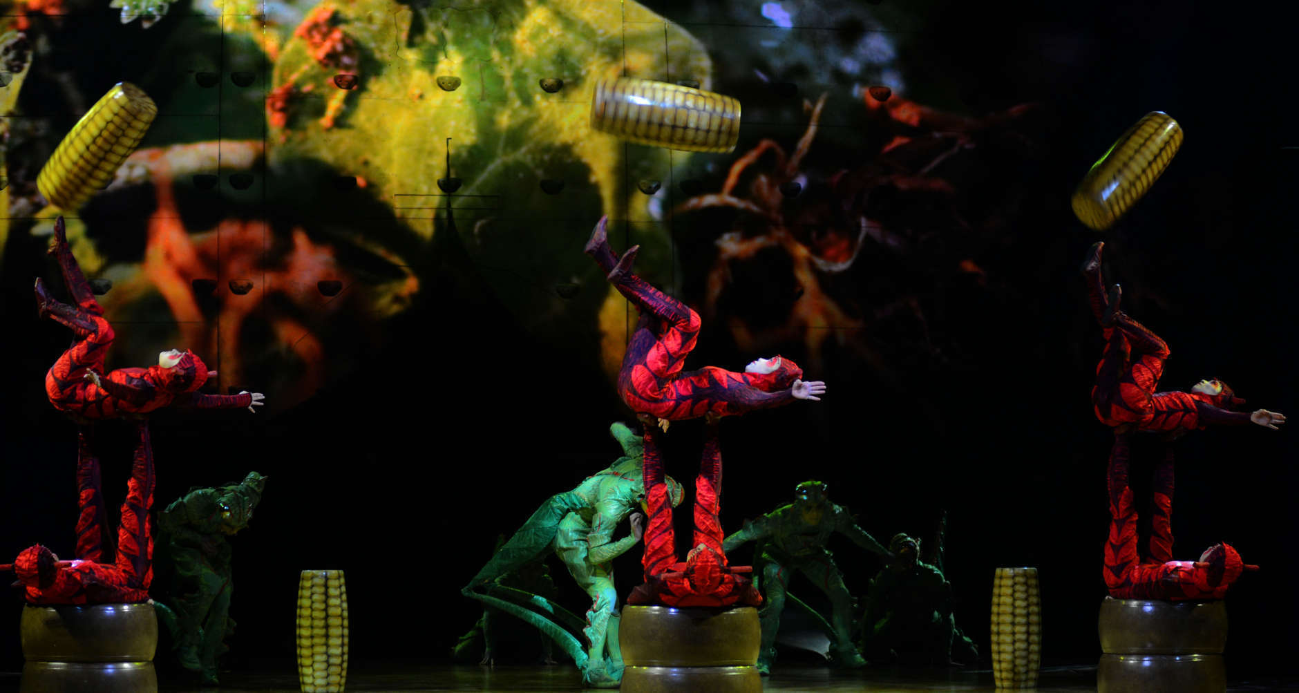 "Ants juggle corn as part of Cirque du Soleil's ""OVO."" (Courtesy Shannon Finney/shannonfinneyphotography.com)"