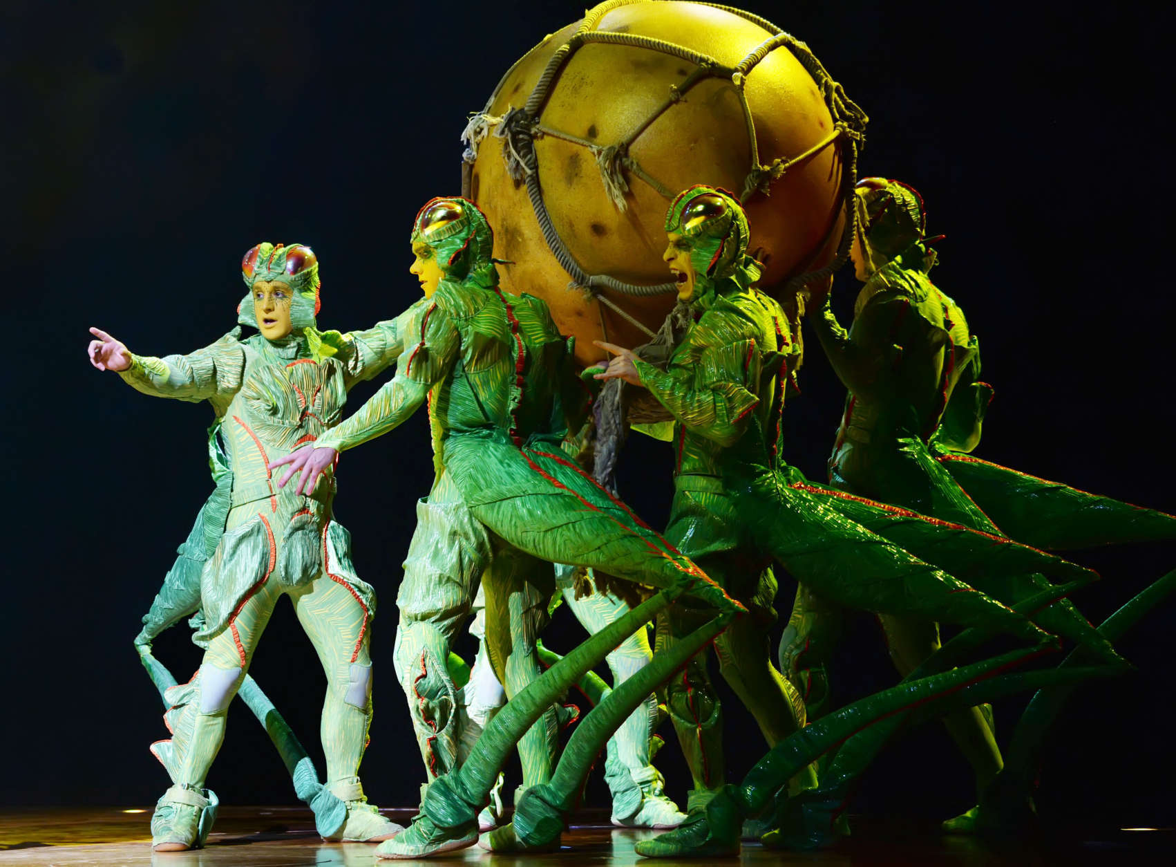 "The colony of crickets carry off the mysterious egg in Cirque du Soleil's ""OVO."" (Courtesy Shannon Finney/shannonfinneyphotography.com)"
