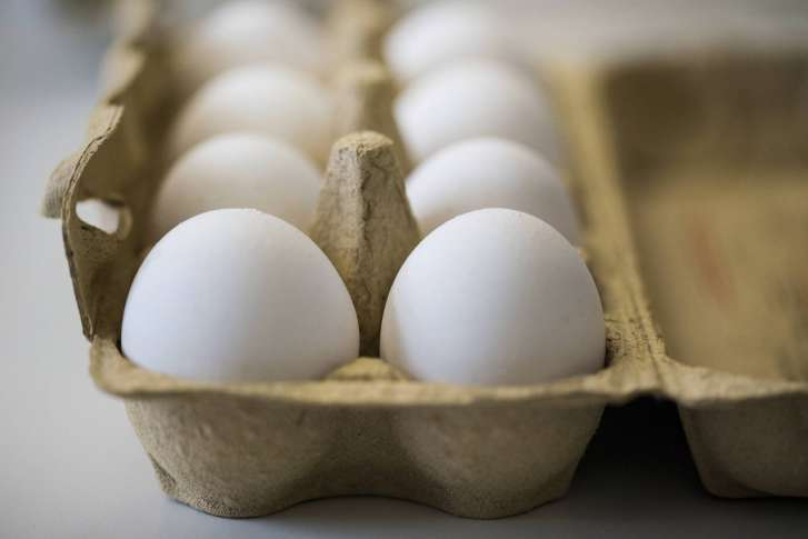 Eggs recall: 700000 distributed in United Kingdom contaminated with fipronil pesticide