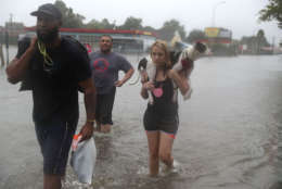 Naomi Coto carries Simba on her shoulders as they evacuate their home after the area was inundated with flooding from Hurricane Harvey on August 27, 2017 in Houston, Texas. Harvey, which made landfall north of Corpus Christi late Friday evening, is expected to dump upwards to 40 inches of rain in Texas over the next couple of days.  (Photo by Joe Raedle/Getty Images)