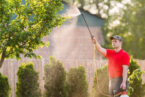 'We're quite angry': Activists, council members react to court striking down pesticide ban