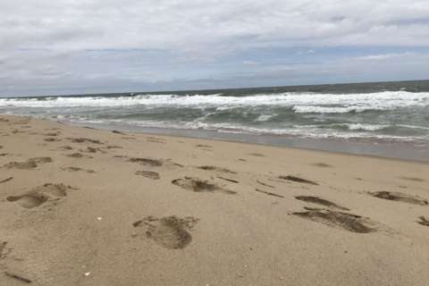 Woman found dead in Ocean City sand was buried alive
