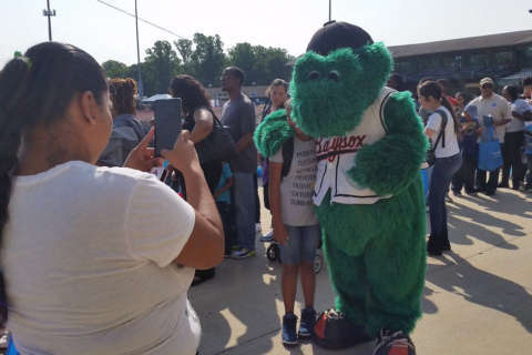 Best local minor league promotions this summer