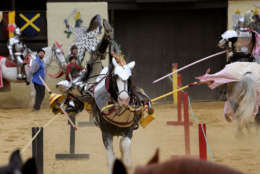 This photo from the 2016 Maryland Renaissance Festival depicts a jousting tournament. (Courtesy Maryland Renaissance Festival)