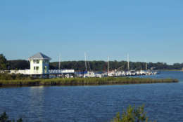Cape Charles Marina has boats and yachts docked at pier.  Evening light darkens water and landscape on Assateague Island, Virginia.