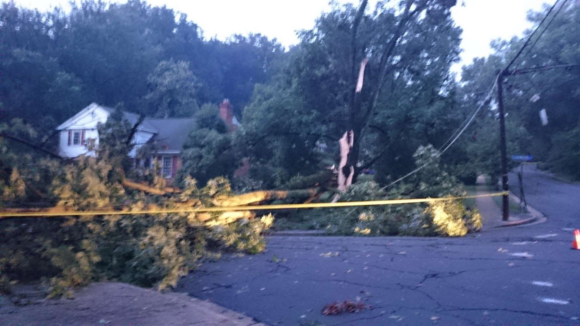 A split tree near Lake Barcroft following Thursday's storms. (WTOP/Dennis Foley)