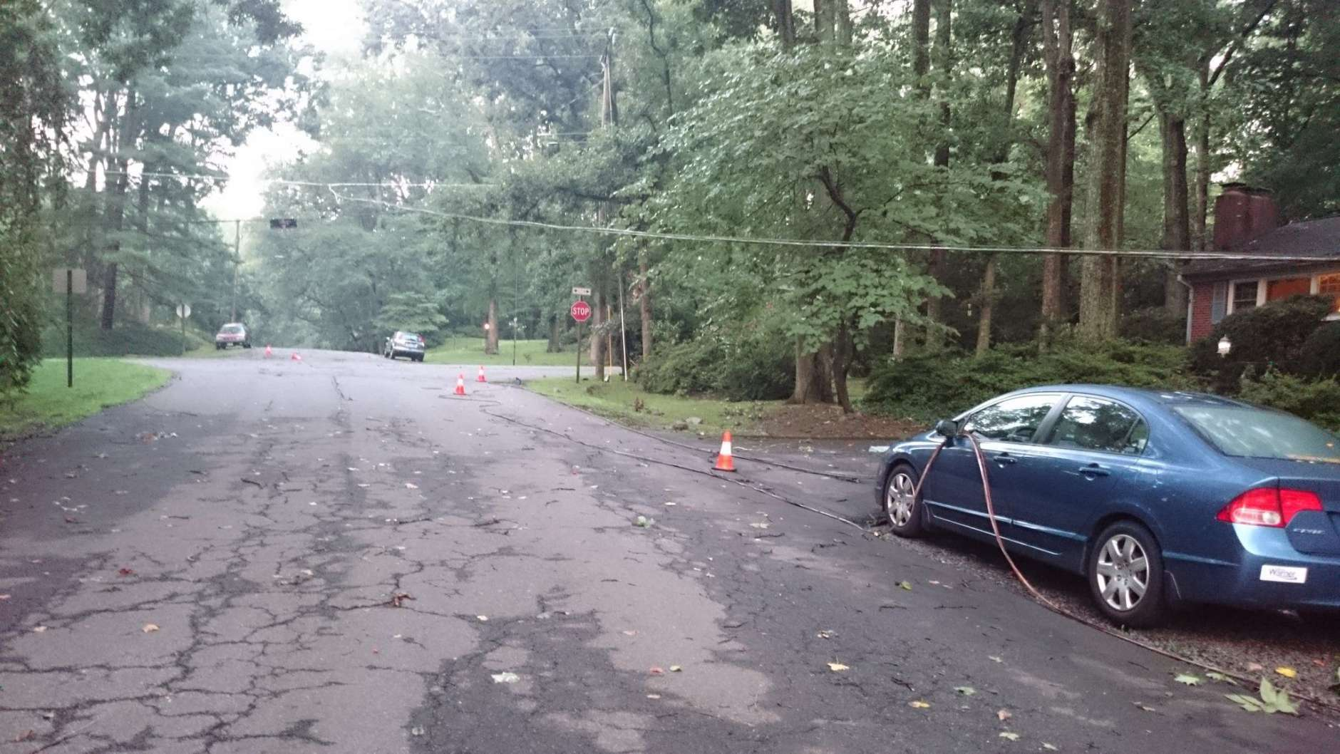 Thursday's powerful storm knocked down trees in Virginia. (WTOP/Dennis Foley)