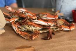 WTOP readers and listeners nominated a number of local businesses serving great crabs in D.C., Maryland and Virginia.  (WTOP/Ginger Whitaker)