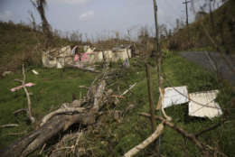 A scene of destruction, which is typical of damage across much of Puerto Rico, in Montebello, Puerto Rico, in the aftermath of Hurricane Maria, Tuesday, Sept. 26, 2017. (AP Photo/Gerald Herbert)