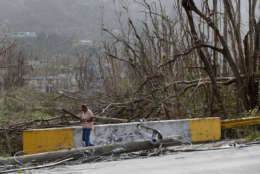 A woman walks past damaged trees and downed power lines, in the aftermath of Hurricane Maria, in Yabucoa, Puerto Rico, Tuesday, Sept. 26, 2017. Governor Ricardo Rossello and Resident Commissioner Jennifer Gonzalez, the island's representative in Congress, have said they intend to seek more than a billion in federal assistance and they have praised the response to the disaster by President Donald Trump, who plans to visit Puerto Rico next week, as well as FEMA Administrator Brock Long.  (AP Photo/Gerald Herbert)