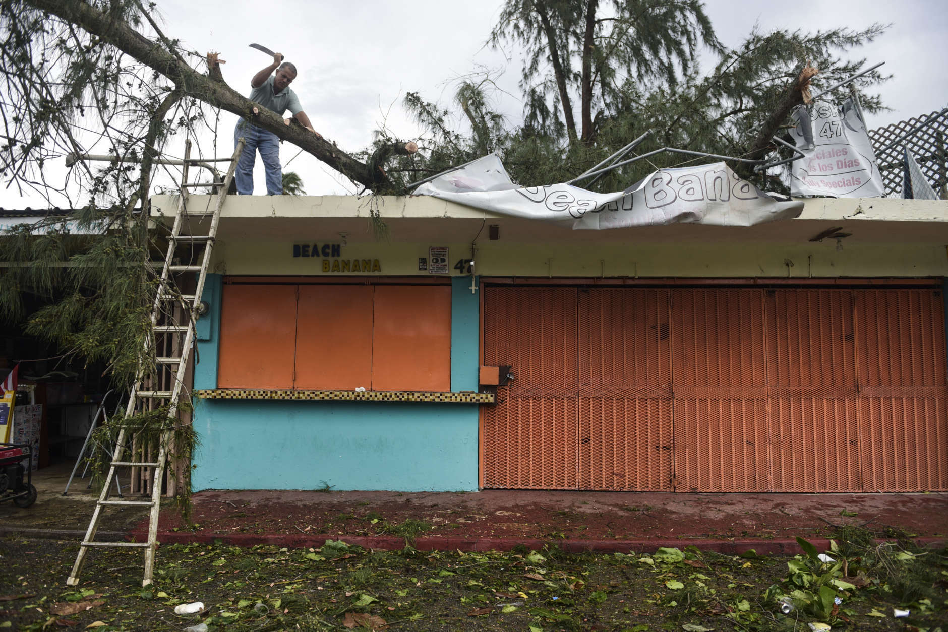 An employee works to remove a felled tree from a rooftop in the aftermath of Hurricane Irma, in Fajardo, Puerto Rico, Thursday, Sept. 7, 2017. Irma cut a path of devastation across the northern Caribbean, leaving at least 10 dead and thousands homeless after destroying buildings and uprooting trees. More than 1 million people in Puerto Rico are without power. (AP Photo/Carlos Giusti)