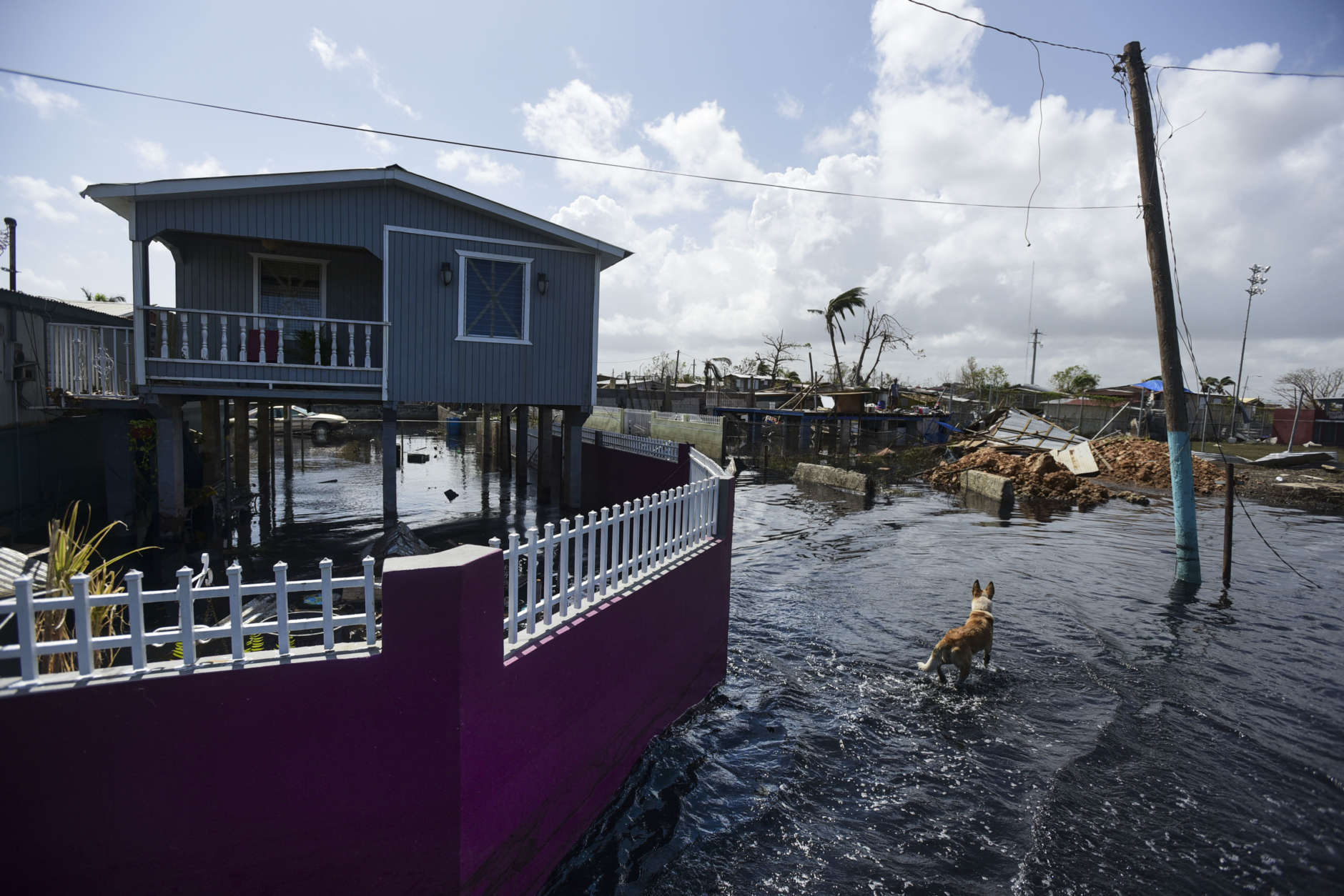 Flood water surrounds homes in the Juana Matos community one week after the passing of Hurricane Maria in Catano, Puerto Rico, Thursday, Sept. 28, 2017. The aftermath of the powerful storm has resulted in a near-total shutdown of the U.S. territory's economy that could last for weeks and has many people running seriously low on cash and worrying that it will become even harder to survive on this storm-ravaged island. (AP Photo/Carlos Giusti)