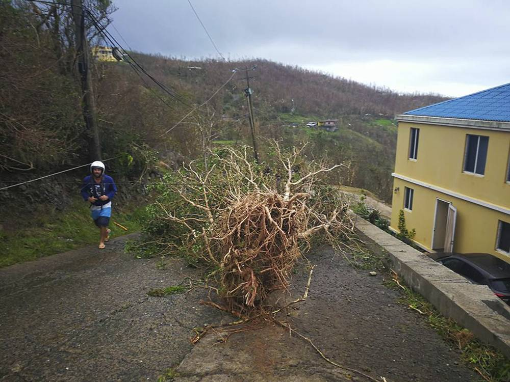 CORRECTS DATE  - This Thursday, Sept. 7, 2017, a man walks past an uprooted tree sitting in the middle of a road in the aftermath of Hurricane Irma in Tortola, in the British Virgin Islands. Irma scraped Cuba's northern coast Friday on a course toward Florida, leaving in its wake a ravaged string of Caribbean resort islands strewn with splintered lumber, corrugated metal and broken concrete. (Jalon Manson Shortte via AP)