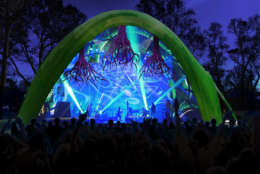 Merriweather Park's new Chrysalis stage shows there is potential for the park's cultural programming to diversify, said OPUS 1 curator and producer Ken Farmer. (Rendering courtesy Wild Dogs International)