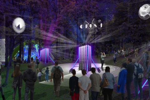 OPUS 1 paints Columbia's woods with innovative visuals and music