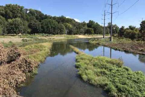 Four Mile Run: A stream restored from dirty ditch to sparkling waters