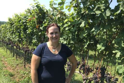 Women in wine: Booming Va. industry sees more women at the helm