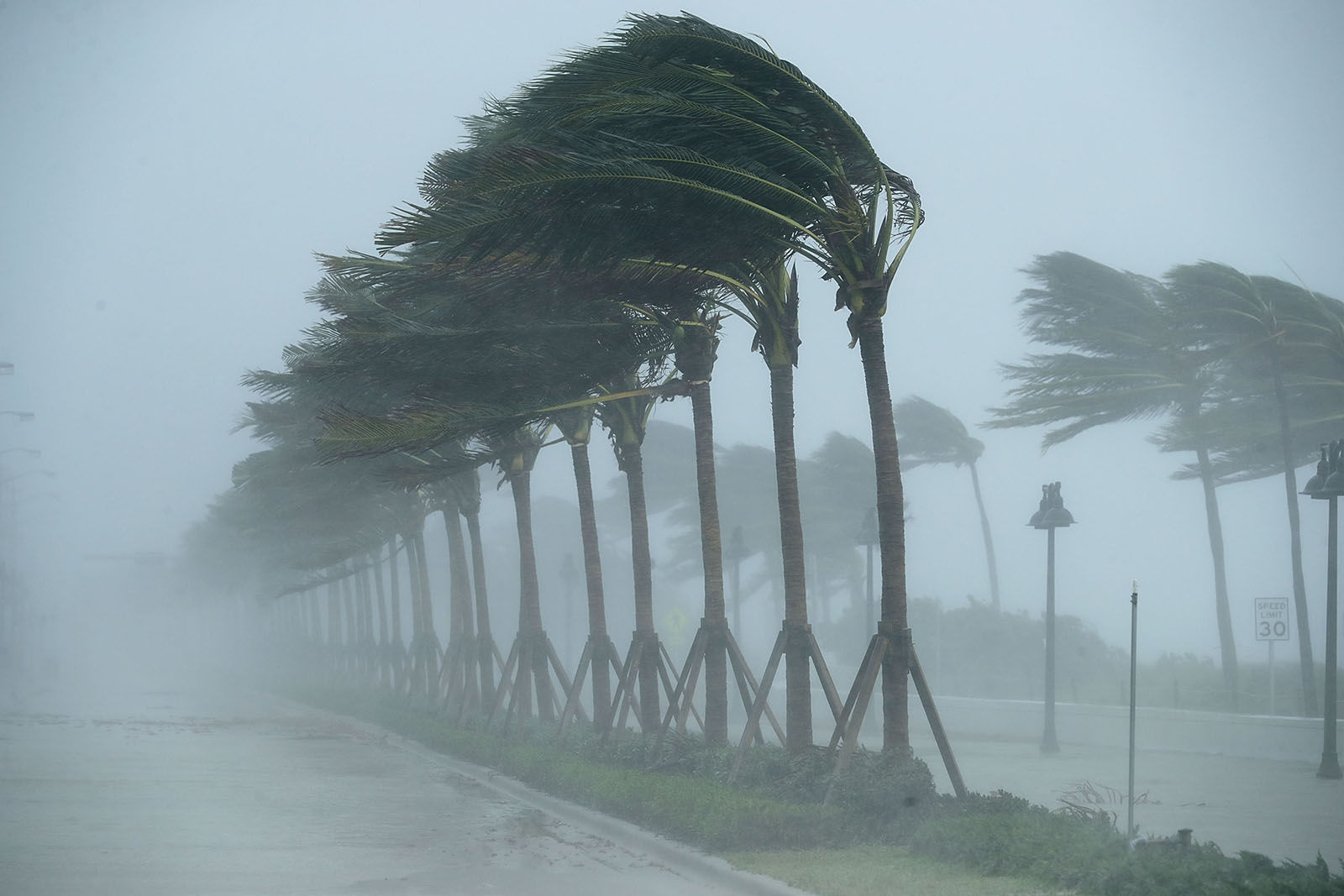 Trees bend in the tropical storm wind along North Fort Lauderdale Beach Boulevard as Hurricane Irma hits the southern part of the state Sept. 10, 2017 in Fort Lauderdale, Florida. The powerful hurricane made landfall in the United States in the Florida Keys at 9:10 a.m. after raking across the north coast of Cuba.  (Photo by Chip Somodevilla/Getty Images)