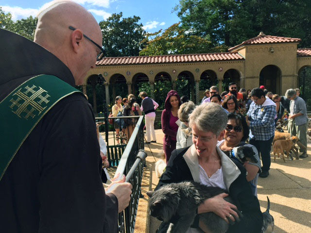 Franciscan Monastery of the Holy Land had a Blessing of the Animals on Saturday, Sept. 30, 2017 in D.C. (WTOP/Dennis Foley)