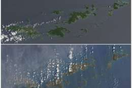 This combo of natural-color images provided by NASA Earth Observatory shows the U.S. and British Virgin Islands islands on Aug. 25, 2017, top, before the the passage of Hurricane Irma, and after the storm passed, on Sept. 10, 2017. The islands, from left, are St. Thomas, St. John, Tortola and Virgin Gorda. Irma passed as a Category 5 storm. (Joshua Stevens/NASA Earth Observatory via AP)