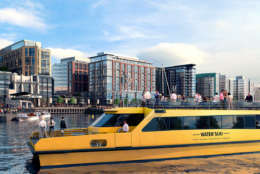 This artists rendering depicts a water taxi that will operate from one of The Wharf's four piers, providing trips to and from Alexandria, Georgetown, and National Harbor, adding to existing stops offered by the Potomac Riverboat Company. (Courtesy PN Hoffman)
