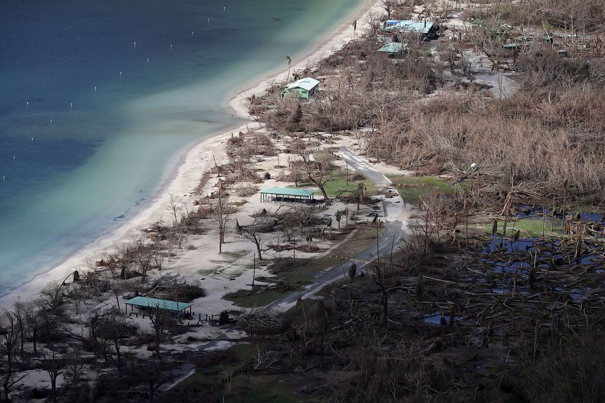 CHARLOTTE AMALIE, US VIRGIN ISLANDS - SEPTEMBER 17:  Trees remain windblow and stripped of their leaves on Magens Bay Beach more than a week after Hurricane Irma made landfall September 17, 2017 in Charlotte Amalie, St Thomas, U.S. Virgin Islands. Irma slammed into the Leeward Islands on September 6 as a Category 5 storm, killing four and causing major damage on the islands of St. John and St. Thomas.  (Photo by Chip Somodevilla/Getty Images,)