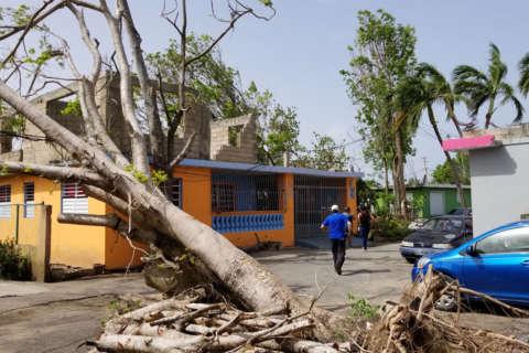 Photos: Destructive hurricane season still marks Puerto Rico