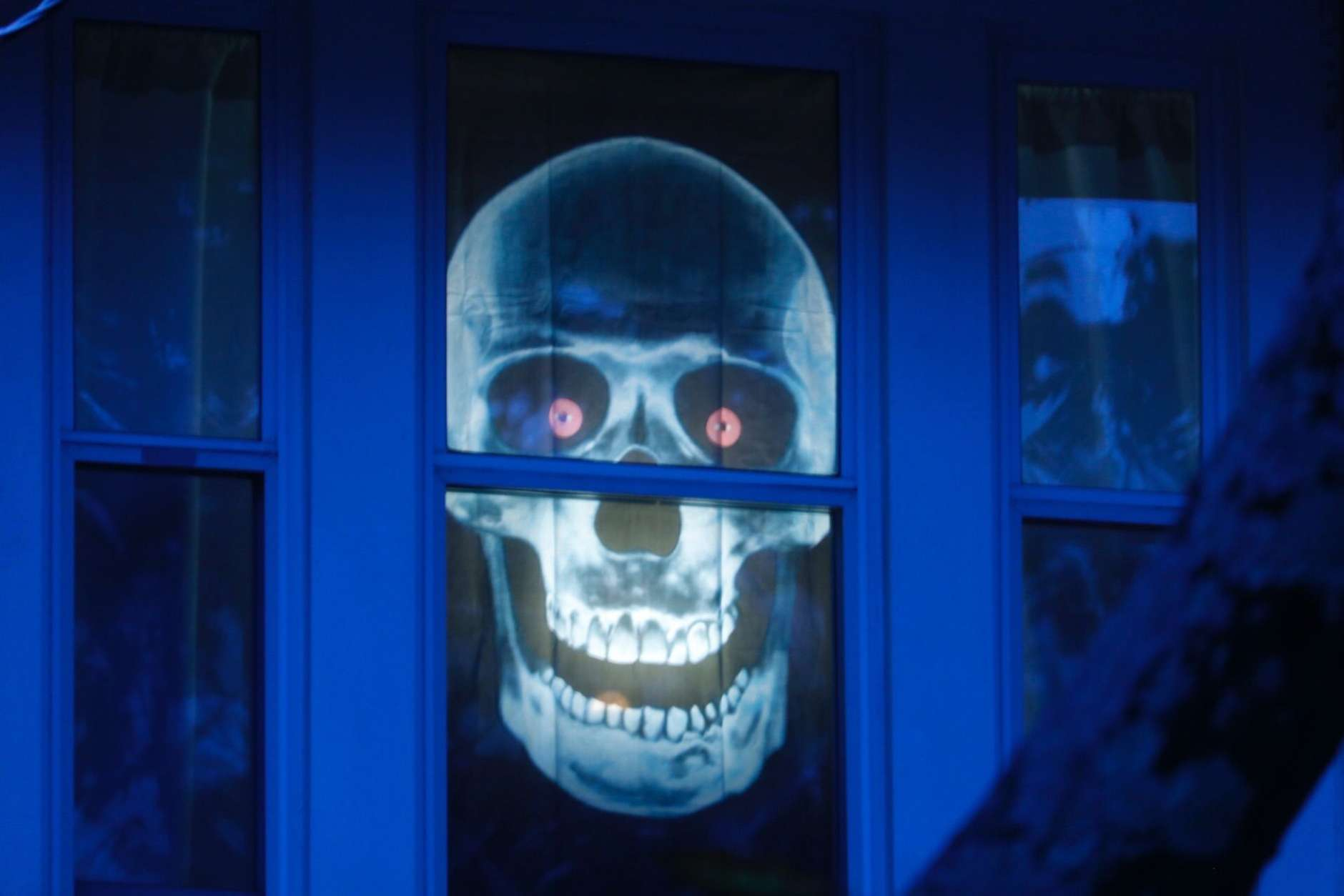 A skull waits in the windows for visitors in Northwest D.C. (WTOP/Kate Ryan)