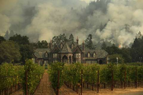 How California wine country fires could affect price, taste of future bottles