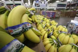 FILE - In this  June 4, 2015, file photo, organic bananas are displayed at a Sam's Club store in Bentonville, Ark. The AP reported on Oct. 20, 2017, that a widely-shared story claiming that a boy contracted HIV after eating a banana purchased a Walmart in Tulsa, Oklahoma, was false. (AP Photo/Danny Johnston, File)